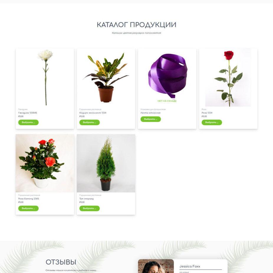 """Интернет-магазин цветов """"Радуга"""""""